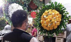 Itens para o Dia de Finados têm variação de mais de 70% em Palmas